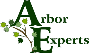 Logo-Arbor-Experts-Color